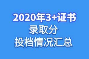 2020年3+证书高考录取分及投档情况汇总
