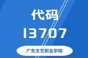 【代码:13707】广东文艺职业学院