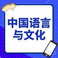 中国语言与文化专业解读